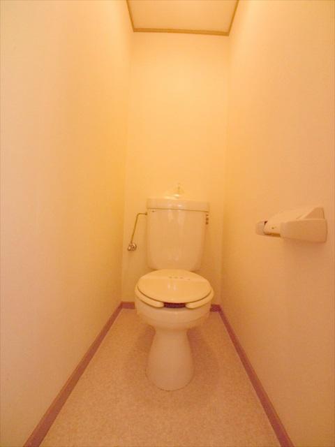 柿沼シティハイツC 207号室のトイレ