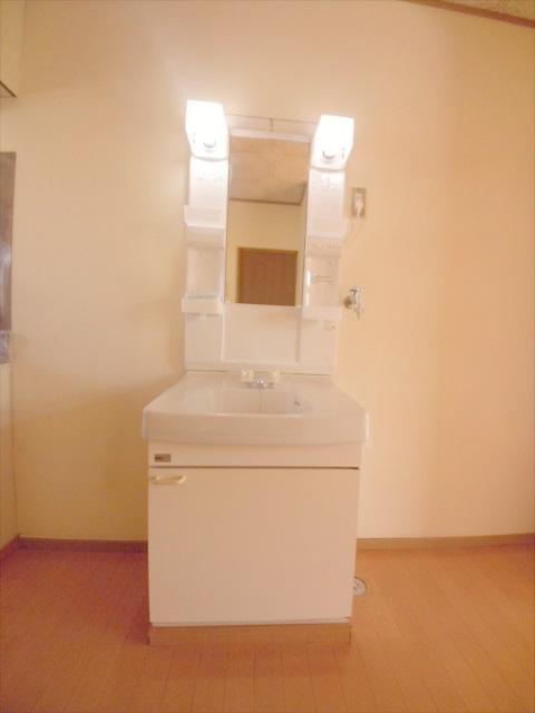 柿沼シティハイツC 207号室の洗面所