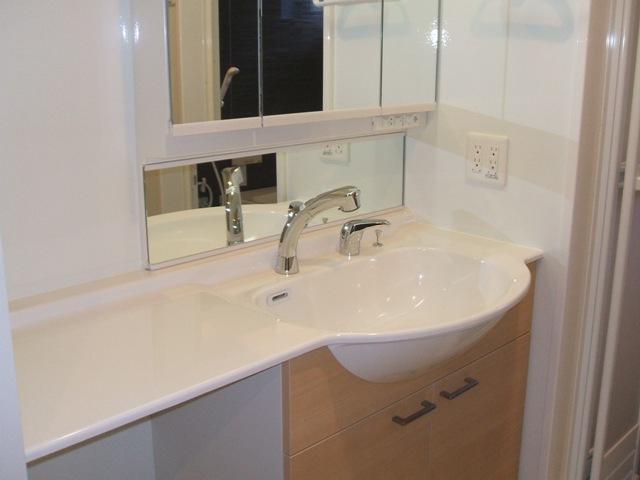 Dandelion B 201号室の洗面所