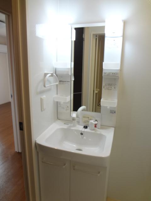 ステラ 303号室の洗面所