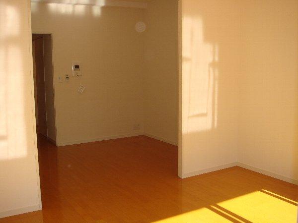 サヴォイ グランデヴィル 705号室のリビング