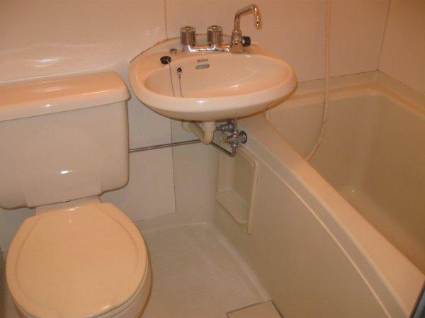グリーンハイツ堀之内 203号室の風呂