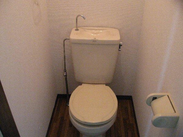 アゼリヤハイツ 101号室のトイレ