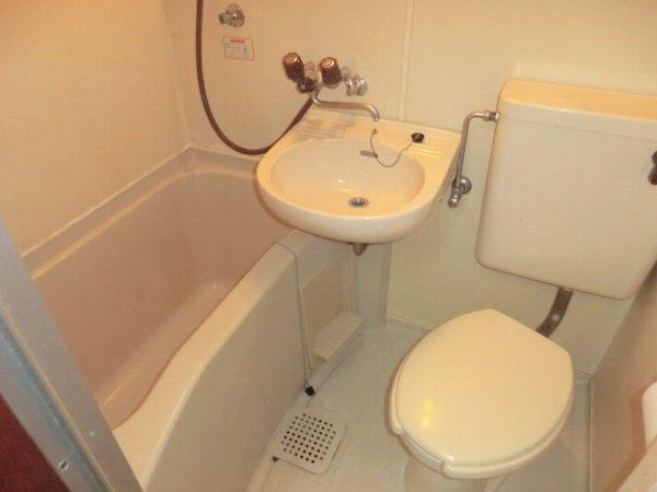 ブルーバーズレジデンス 301号室の風呂