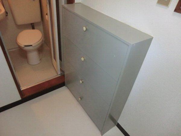 ブルーバーズレジデンス 301号室のトイレ