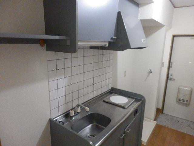 ルネッサンス向ヶ丘 201号室のキッチン