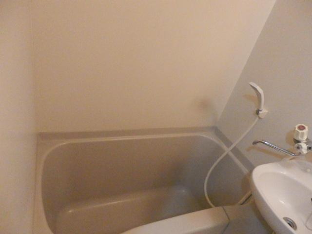 ルネッサンス向ヶ丘 201号室の風呂