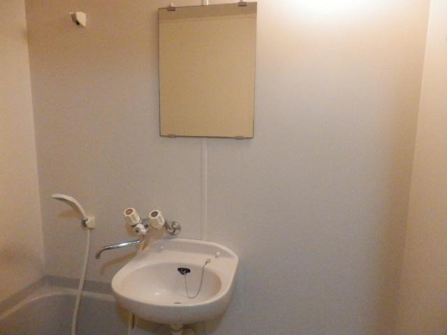 ルネッサンス向ヶ丘 201号室の洗面所