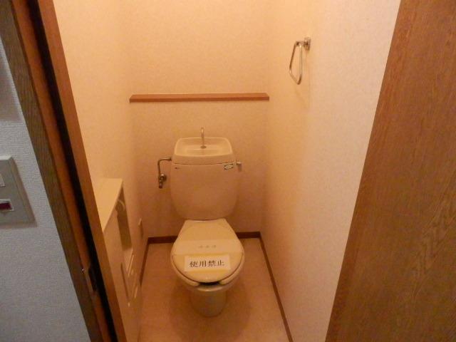 ルネッサンス向ヶ丘 201号室のトイレ