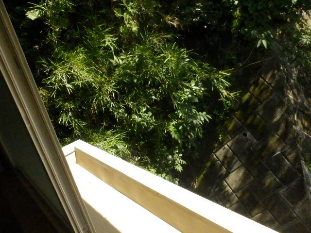 ルネッサンス向ヶ丘 201号室のバルコニー