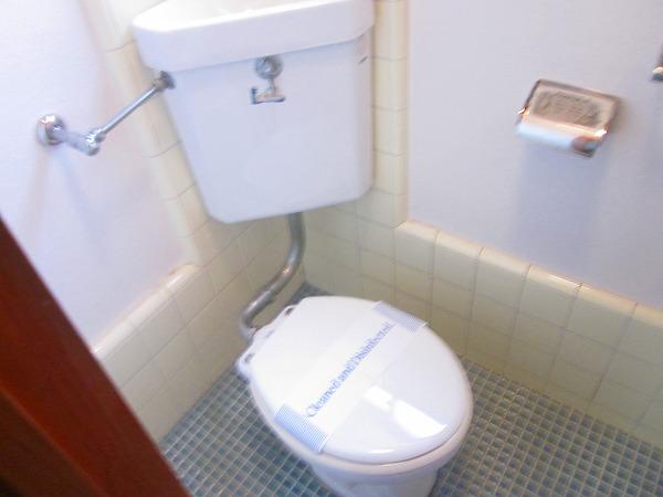 ハイツ洗足 101号室のトイレ