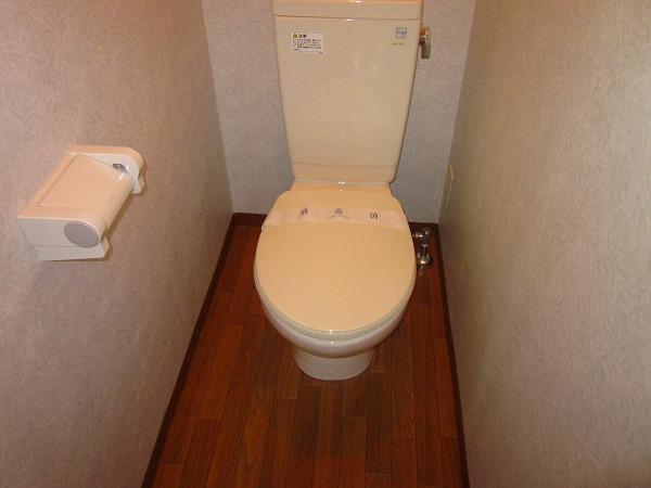 メゾン赤松 502号室のトイレ