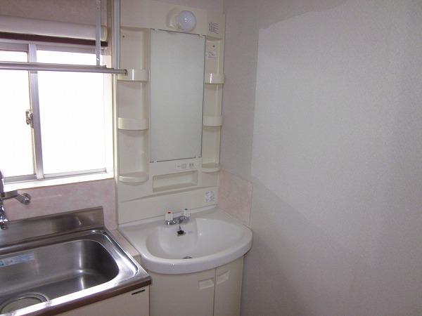 メゾン赤松 502号室の洗面所