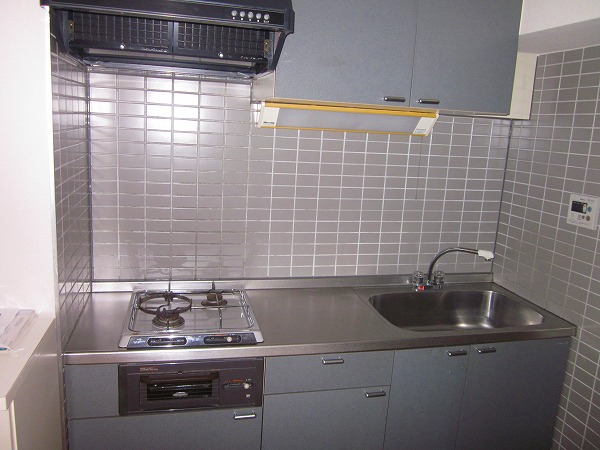 トーレタケダ 205号室のキッチン