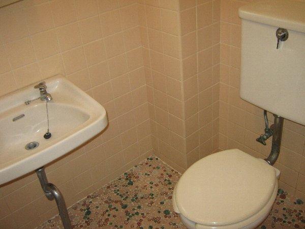 桜山ハイツ 202号室のトイレ