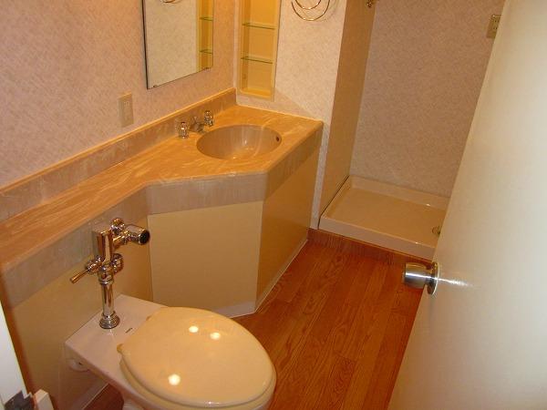プルミエール洗足池 301号室のトイレ