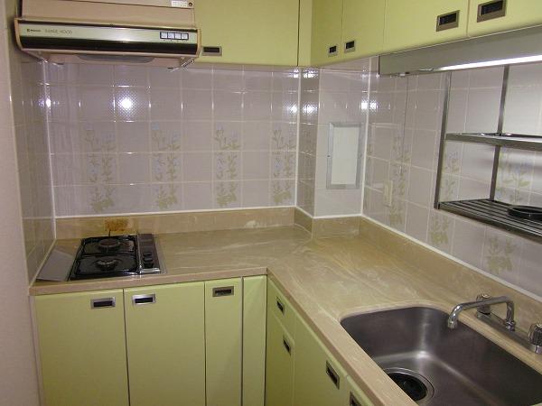 プルミエール洗足池 301号室のキッチン