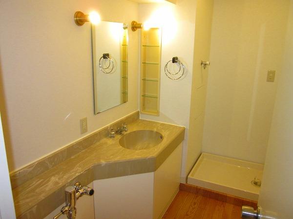 プルミエール洗足池 301号室の洗面所