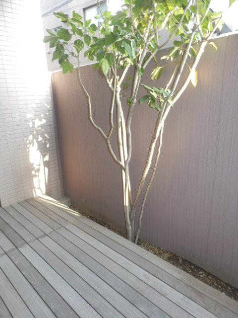クリオ上野毛ラ・モード 105号室のバルコニー
