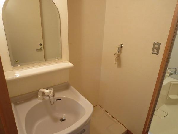 ヴィソカ 1B号室の洗面所
