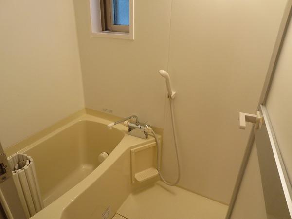 ヴィソカ 1B号室の風呂