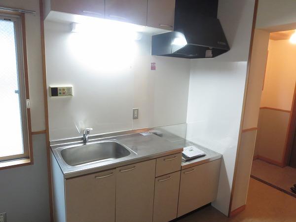 ヴィソカ 1B号室のキッチン