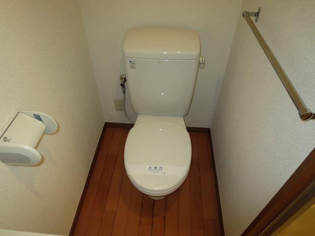 タウンハウス大岡山 101号室のトイレ