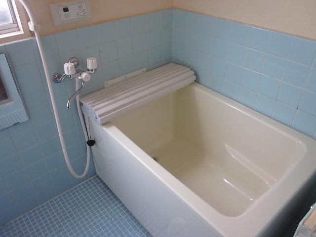 ミニメゾン 103号室の風呂