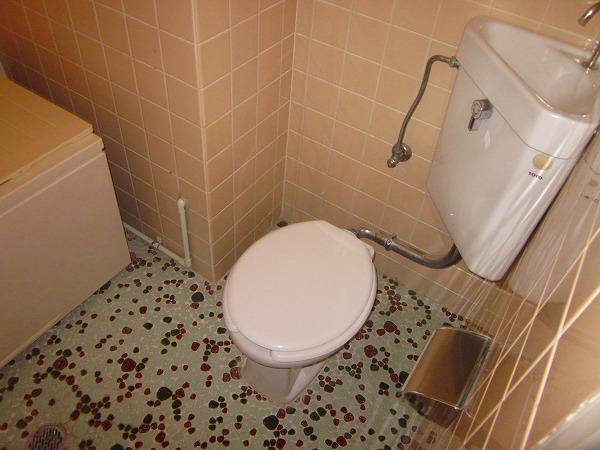小野ハイツ 302号室のトイレ