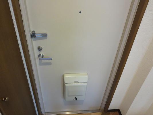 パレスサイド 302号室の玄関