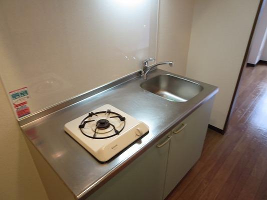 パレスサイド 302号室のキッチン