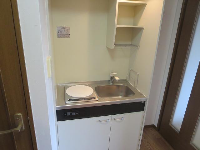 エクセルコート大岡山 205号室のキッチン