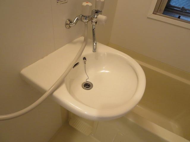 エクセルコート大岡山 205号室の洗面所