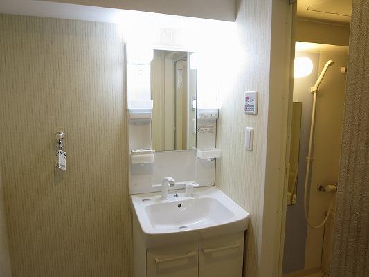 フォルトゥーナ洗足 203号室の洗面所