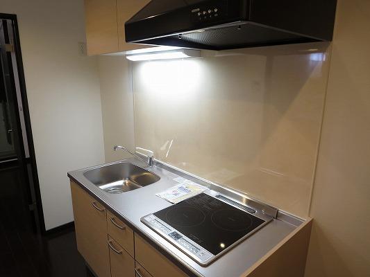 フォルトゥーナ洗足 203号室のキッチン