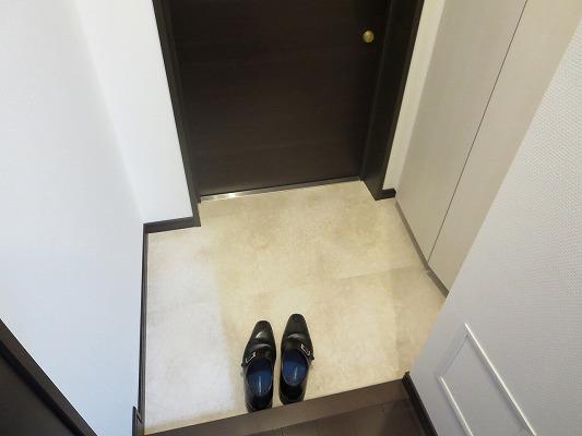 フォルトゥーナ洗足 203号室の玄関