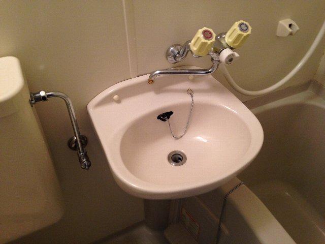 コートドオルウチダ 202号室の洗面所