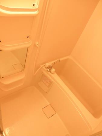 ヴェルメゾン美季 103号室の風呂