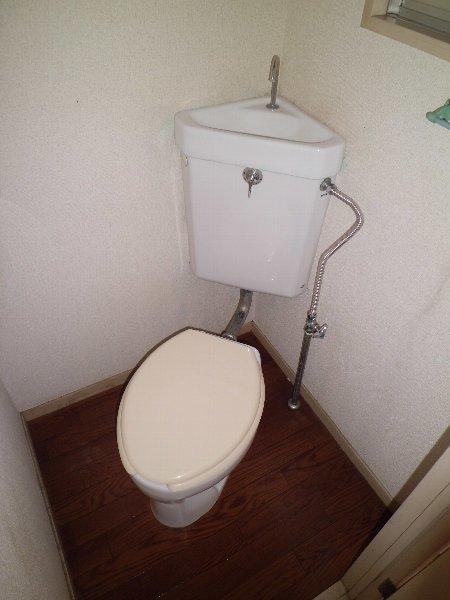ブルーハイツ平潟 D号室のトイレ