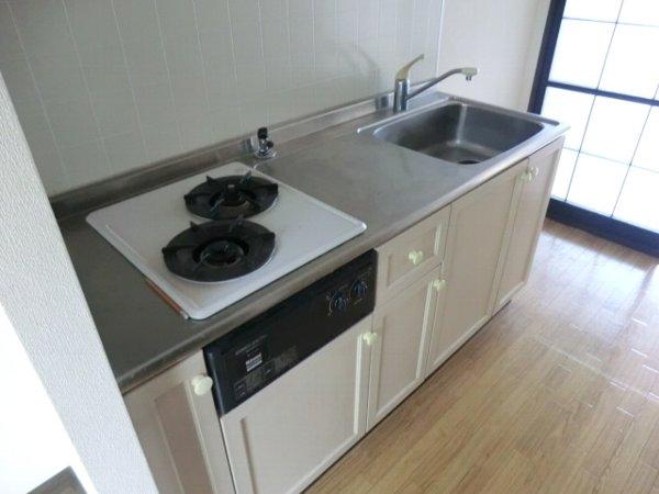 カレッジサイド寺田 203号室のキッチン