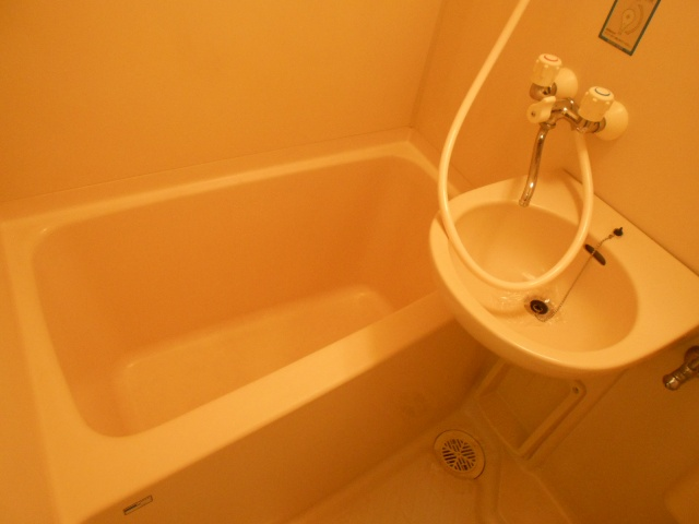 Felice浦和(フェリーチェ) 113号室の風呂