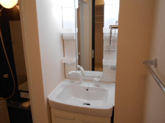 リヴィエール 206号室の洗面所