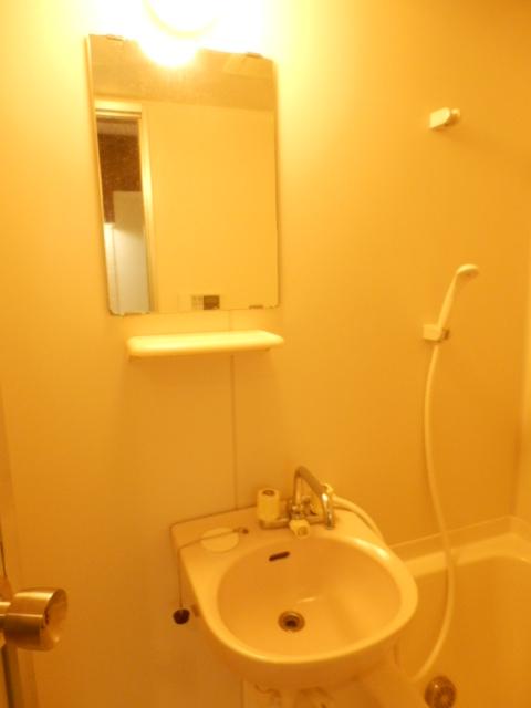 マーベラス弐番館 304号室の洗面所