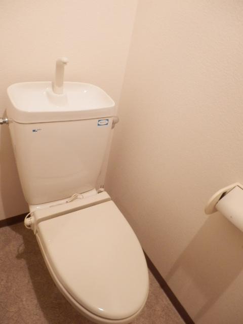 マーベラス弐番館 304号室のトイレ