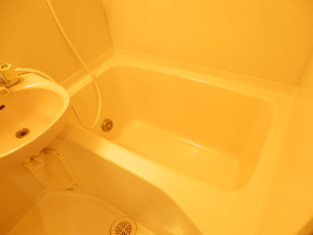 マーベラス弐番館 304号室の風呂