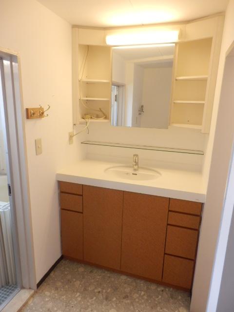 鴻巣橋ハイツ 301号室の洗面所