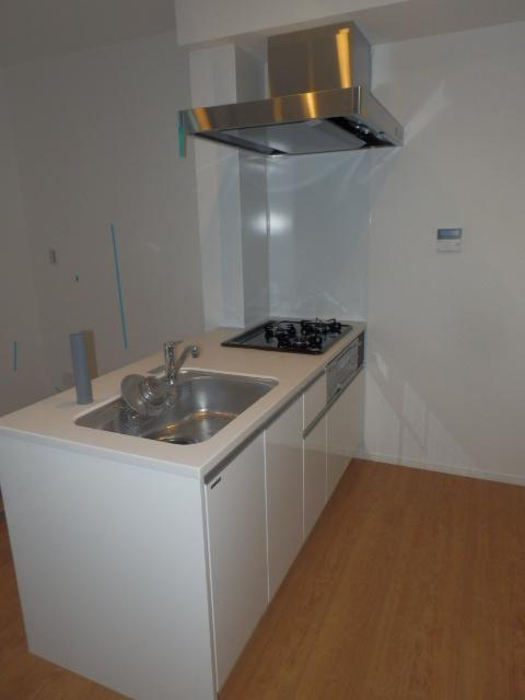 田園調布レジデンス 206号室のキッチン