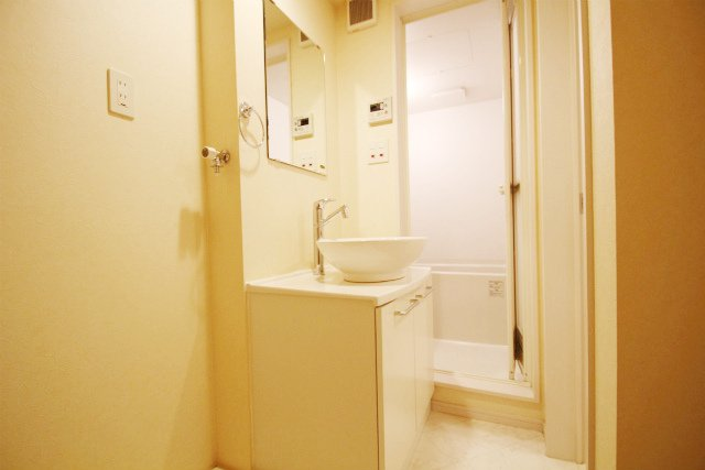 SCARLET箱崎(スカーレット) 203号室の洗面所