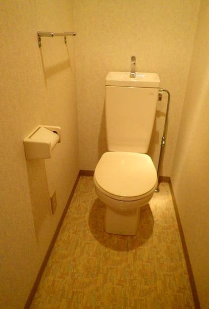 アーバンビュー21 202号室のトイレ