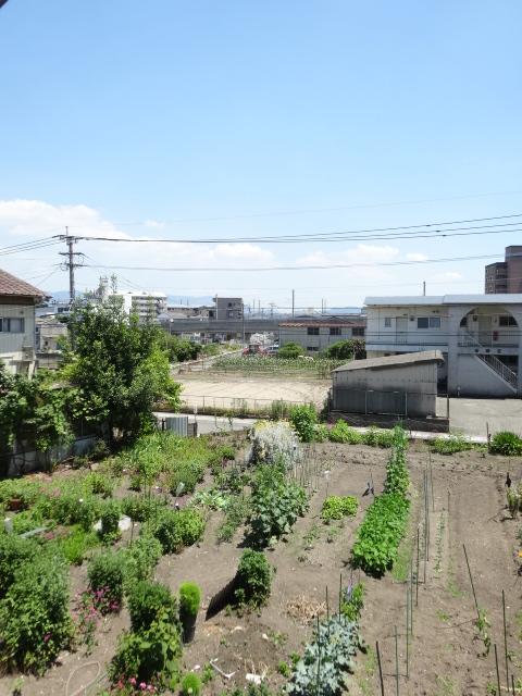 郷口荘 3号室の景色